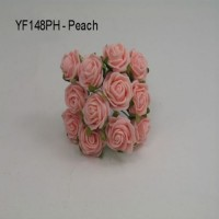 YF148PH  MINI TEA ROSE IN PEACH
