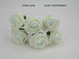 YF43LIPM -Quality  6 Contrast Cottage Rose in Ivory and Peppermint Colourfast foam